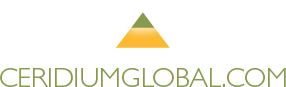 Bradenton-Sarasota logo